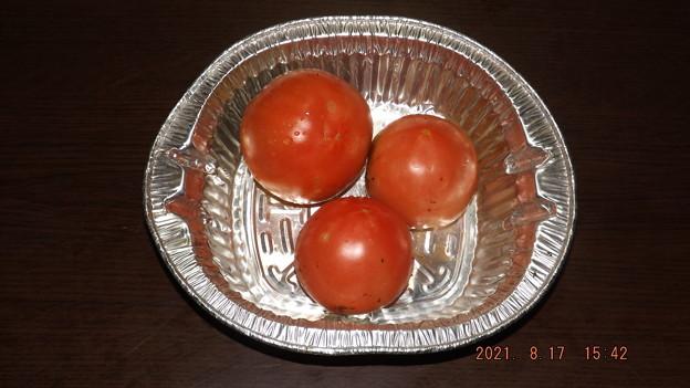2021/08/17(火)・午後に採れたお野菜