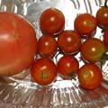 2021/08/27(金)・午後に採れた野菜達