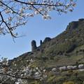 不動岩の春