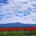 Photos: 赤い帯