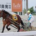 Photos: マオノダイマオー(2018年6月30日第5競走)