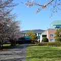 高知工科大学