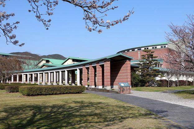 Photos: 高知工科大学と桜