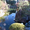 Photos: 豊島区立目白庭園04