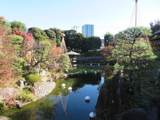 豊島区立目白庭園05