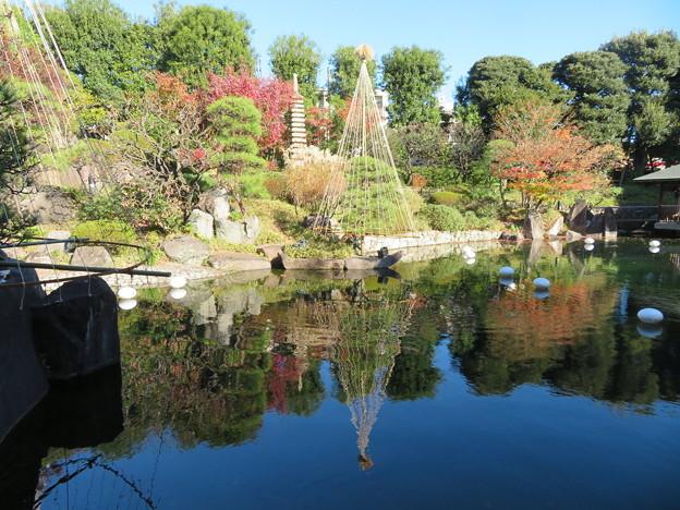 豊島区立目白庭園06