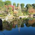 Photos: 豊島区立目白庭園06
