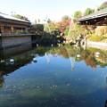 Photos: 豊島区立目白庭園01