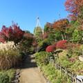 Photos: 豊島区立目白庭園02