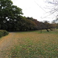Photos: 小石川植物園009