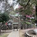 駒込富士神社01