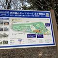Photos: 飛鳥山02