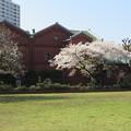 Photos: 醸造試験所跡地公園02