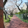 Photos: 醸造試験所跡地公園01