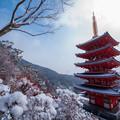 Photos: 本福寺♪