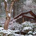 Photos: 大興善寺♪