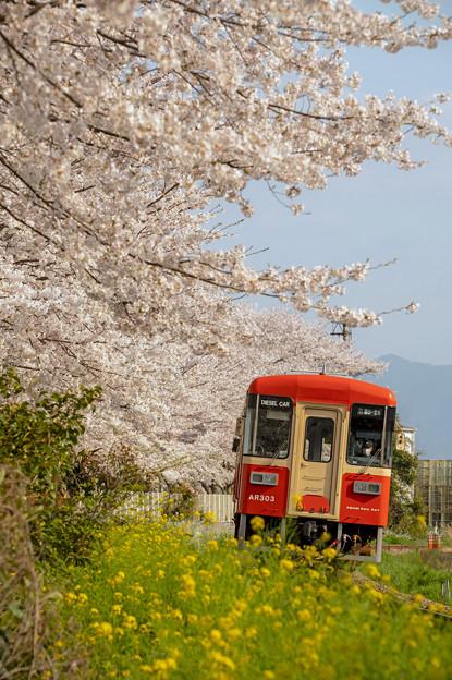 甘木鉄道♪