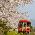 Photos: 甘木鉄道♪