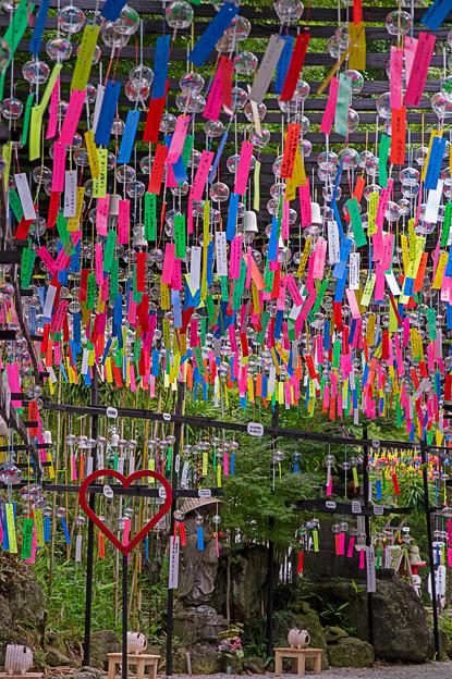 三井寺の風鈴祭り♪