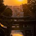 Photos: 光の道♪