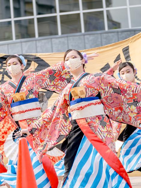 YOSAKOIソーラン日本海加賀会場2021 粟津おすえべ花吹雪