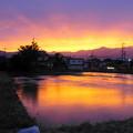 Photos: 「田舎暮らしの夕焼け」