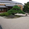 アートの庭園--