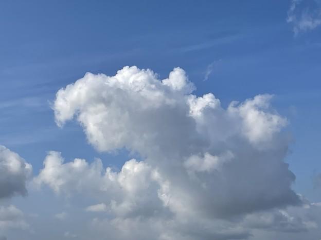 ダンボ?のような雲