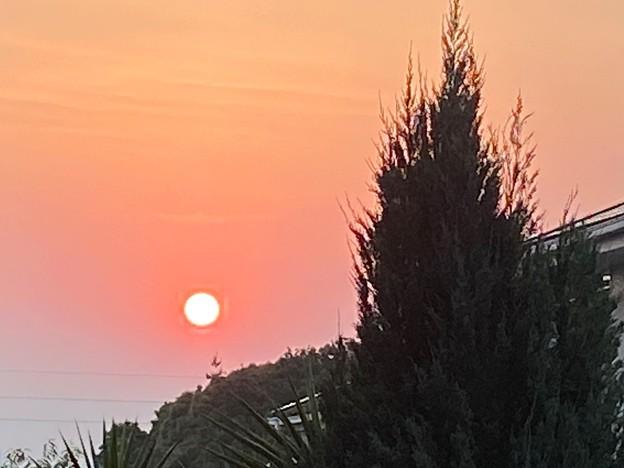 2021.6.10 朝陽