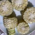 2021.8.1 白い玉蜀黍