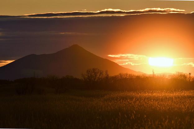 渡良瀬の朝陽