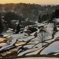 Photos: 残雪の棚田
