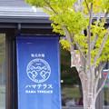 002_道の駅おながわ_2