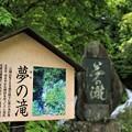 Photos: 東京 檜原村 夢の滝