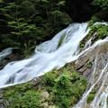 Photos: 東京檜原村 夢の滝