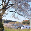 Photos: 162 伊師本郷の経塚