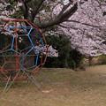 Photos: 309 かみあい第一児童公園