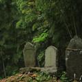 Photos: 堂坂の馬力神