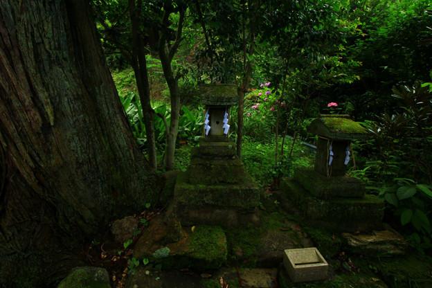 423 阿夫利社・弁天社 御岩神社