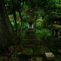 Photos: 423 阿夫利社・弁天社 御岩神社