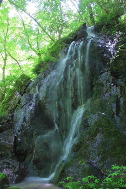 石尊の滝 花園神社