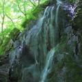 Photos: 石尊の滝 花園神社