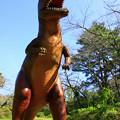 水戸森林公園のティラノサウルス