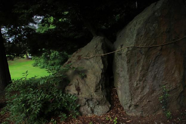 Photos: 910 陰陽石 日立稲荷神社