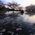 Photos: 096 かみね公園の噴水