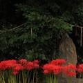857 東金沢の天道大日如来碑