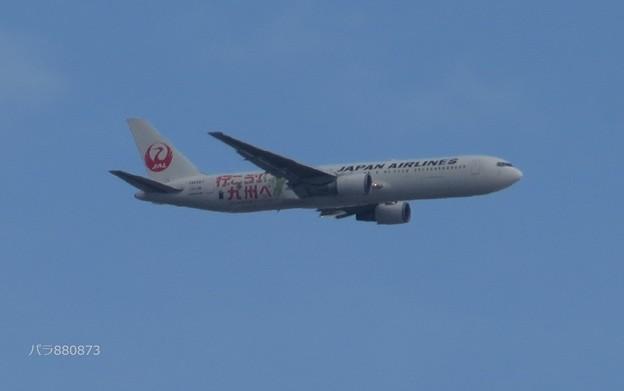 Photos: JAL で 行こう「九州ふっこう割」