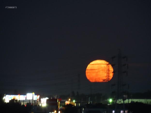 Photos: 中秋の名月の出始め♪