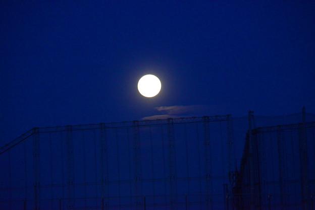 秋めいて望月