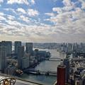 Photos: 隅田川~東京湾